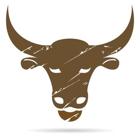 bull horn: bull head