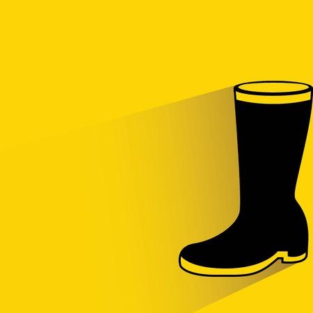 foot gear: boot