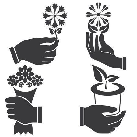 hand holding plant: hand holding flowers Illustration
