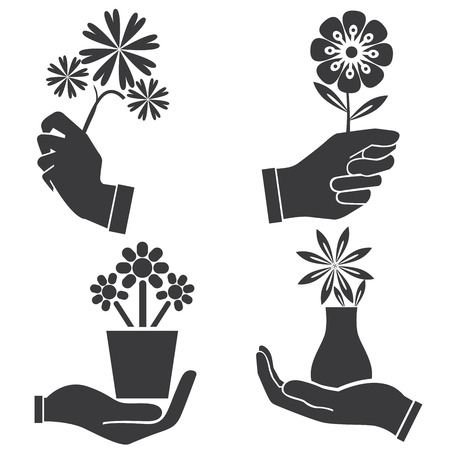 hands holding plant: hand holding flowers illustration  Illustration