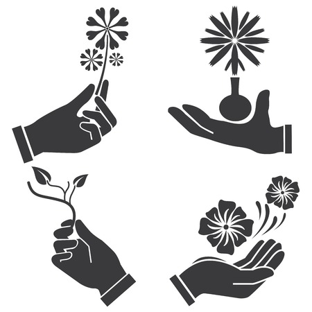 nicety: hand holding flowers illustration  Illustration