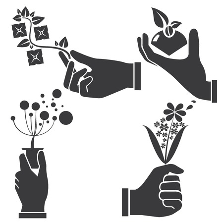hand holding plant: hand holding flowers illustration  Illustration