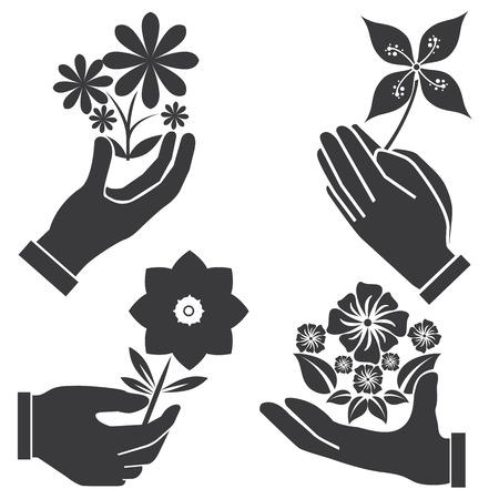 nicety: hand holding flowers illustration  Illustration