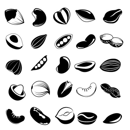 seed nut icons Vector