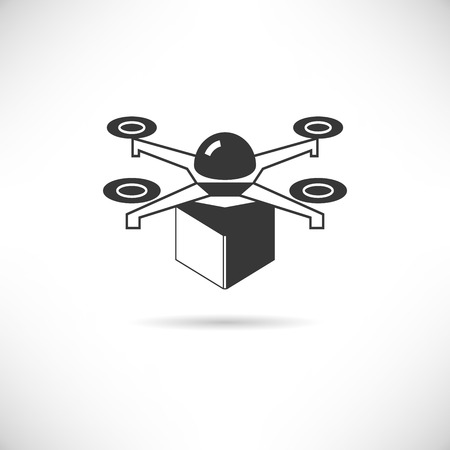 drone: drone shipping