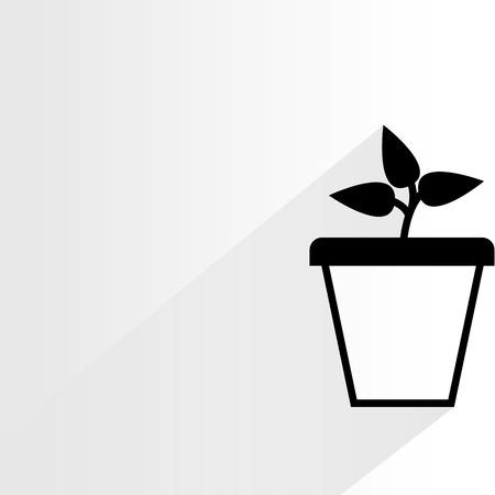 indoor garden: tree pot