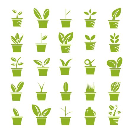 green pot plant icons set vector
