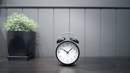 Black color classic alarm clock on the working wood table and decoration with little tree plant for represent work on time or have meeting or have to wake up and nice wallpaper background.