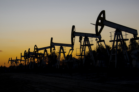 jacks: Pump jacks silhouettes during sunset on the oilfield. Oil and gas concept.