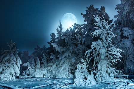 Nightly landscape with fir forest snow and full moon. Siberia. Toned. Stock Photo