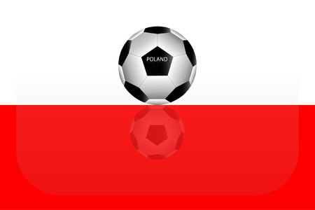 Poland flag Çizim
