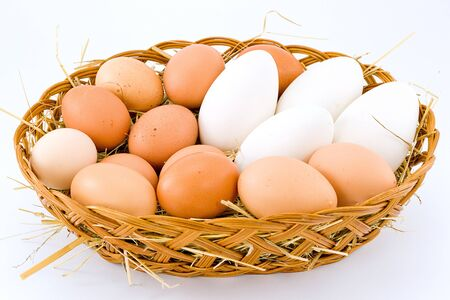 chicken eggs and duck photo