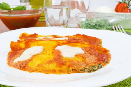 crepes stuffed with spinach and mozzarella Stock Photo - 13236017