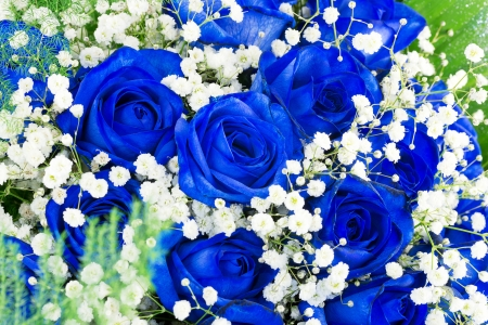 bouquet of blue flowers- roses  photo