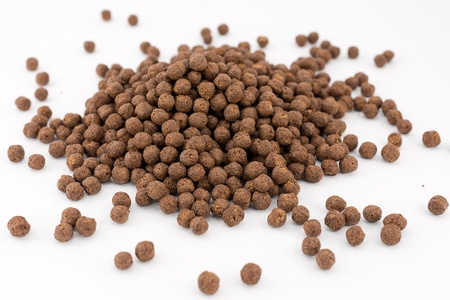 chocolate cereals, breakfast Stock Photo - 16449546
