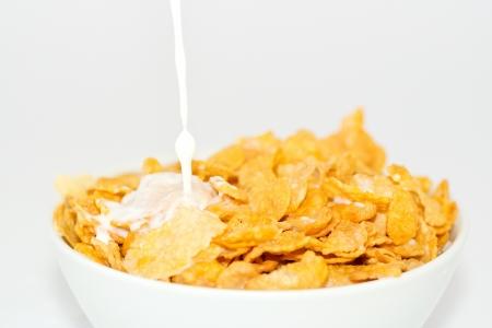 milk and cornflakes Stock Photo - 16449557