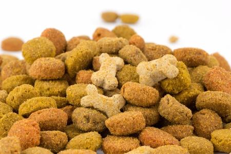 comida perro: alimentos para perros Foto de archivo