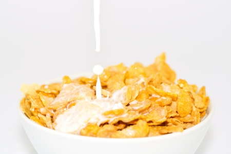 milk and cornflakes  Stock Photo - 16449552