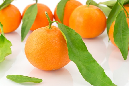 tangerines  Stock Photo - 16704080
