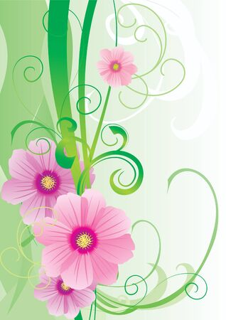 cosmos flowers: green vector spring illustration with pink cosmos flower