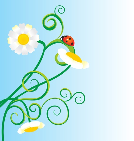 ladybird grass and daisies vector meadow illustration illustration