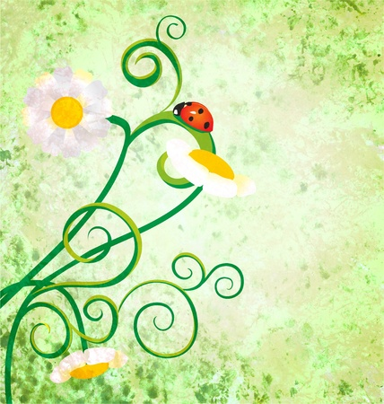 red ladybird on daisy flowers grunge background photo