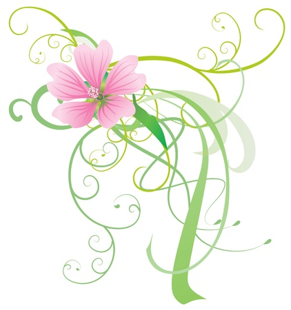 mallow: mallow vector flower with abstract decor pink illustration isolated  on white
