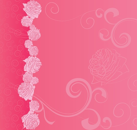 pink vector background with roses and curves for love and wedding, romance illustration illustration