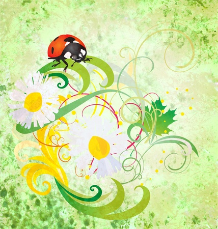 grunge illustration with ladybird and daisy flowers green vintage illustration Stock Illustration - 13489978