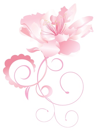 eczotic flower nature vector pink curves isolated on white