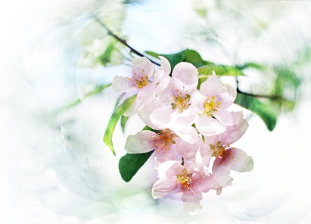 spring trees blossom CG watercolor illustration illustration