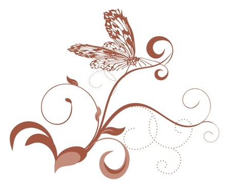 brown curves with butterfly Stock Photo - 14390090