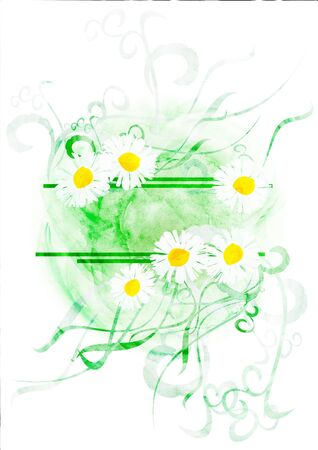 CG watercolor banner with chamomiles or daisies isolated on white photo