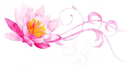 flor de loto: agua lirio rosa CG ilustraci�n acuarela aislados en blanco