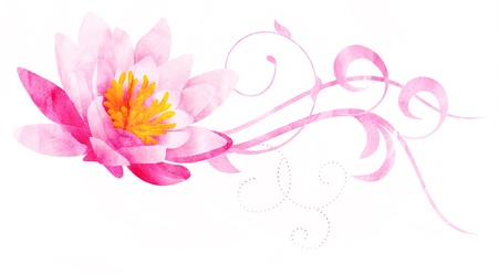pink water lily CG watercolor illustration isolated on white Stock Illustration - 14390060