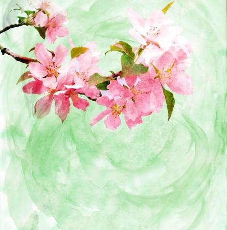 hand painted: spring trees blossom CG watercolor illustration
