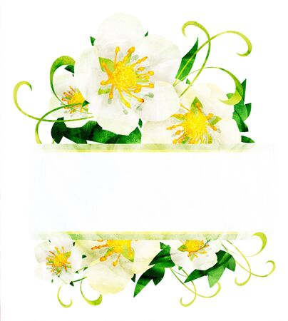 CG watercolor white wild roses flowers border isoleted on white Stock Photo - 14390067