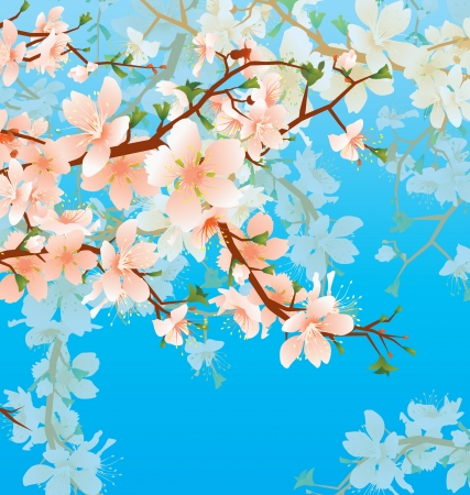 vector blossoming tree brunch in the garden on the blue sky background photo