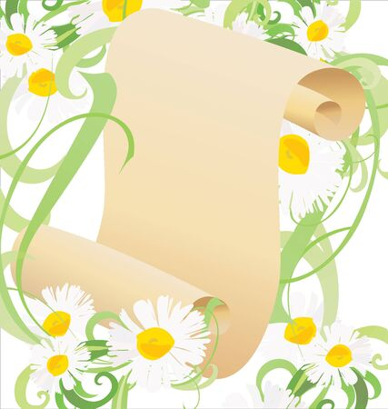 daisy flowers, green grass and old paper scroll illustration illustration