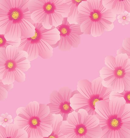 pink cosmos flowers borders and corners vector photo