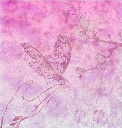 magenta decor: detailed butterfly with floral ornament on magenta backdrop