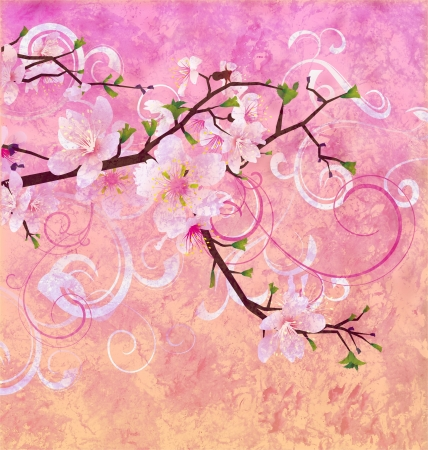 peach pink colors blooming cherry tree grunge background photo