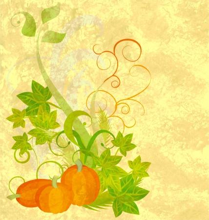 harvest background: autumn textured orange pumpkin background
