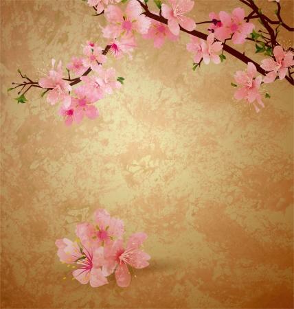 flor de sakura: primavera flor del cerezo y flores rosadas en fondo marr�n viejo grunge papel