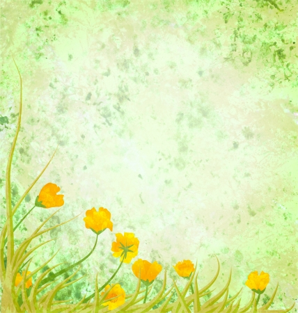 boarder: light green illustration with yellow flowers
