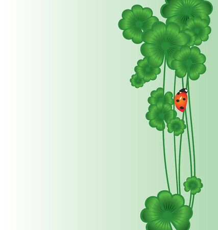 Clover   border on white with ladybird for St. Patrick's day Stock Photo - 14815785
