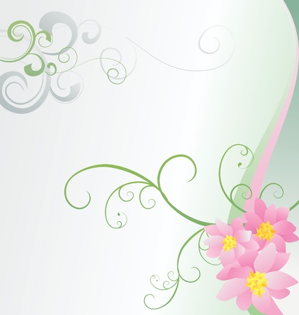pink flowers on white background Stock Photo - 14815699