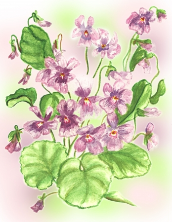 violets flowers watercolor paint photo