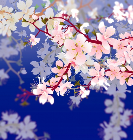 japanese apricot: vector blossoming tree brunch in the garden on the blue sky background