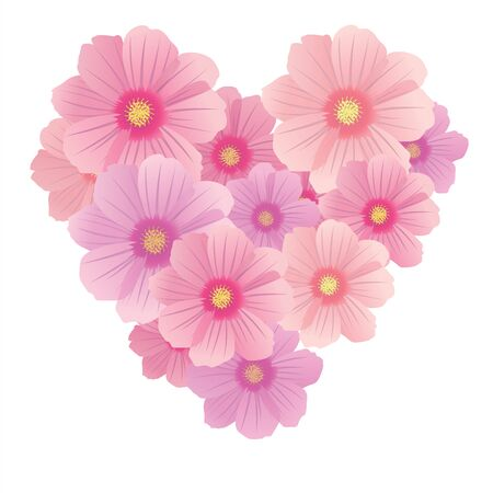 cosmos: Vector spring background with gentle heart from flowers and petals,isolated on the white background Illustration